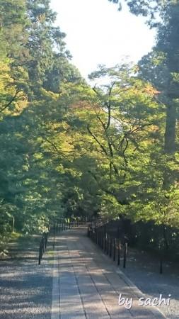 28日光明寺2 by sachi