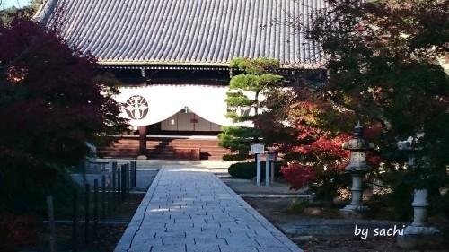 29日光明寺2 by sachi