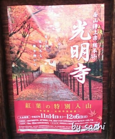 by sachi 11月10日光明寺6r