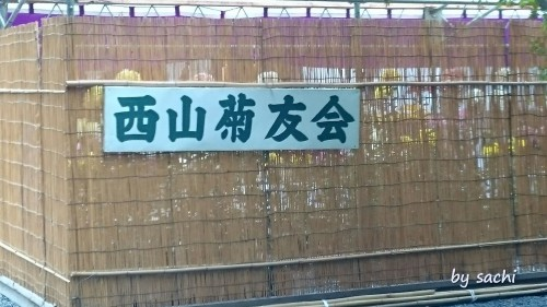 by sachi 11月7日光明寺12