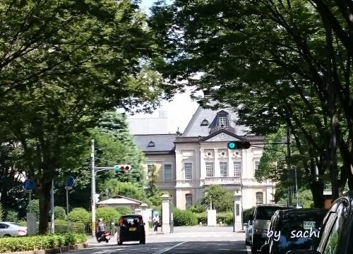 sachi 府庁前2