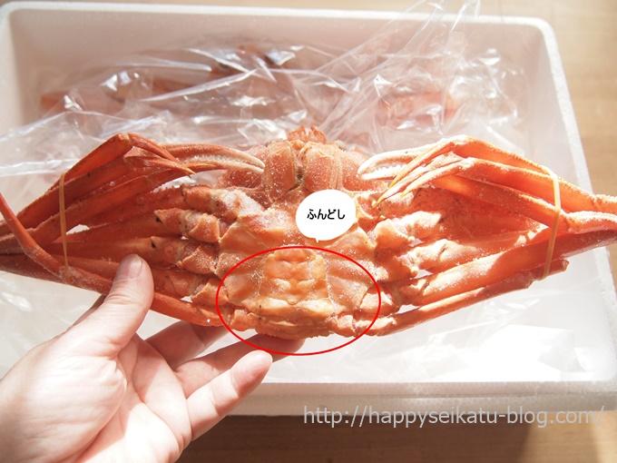 香住産 紅ずわい蟹